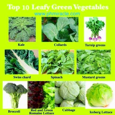 Top Green Leafy Vegetables | get healthy! :) | Pinterest ...
