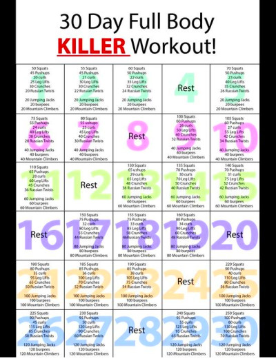 So I have been looking at all of these 30 day workout challenges and ...