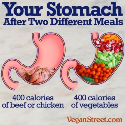 Opt for filling your stomach with a whole food plant based ...