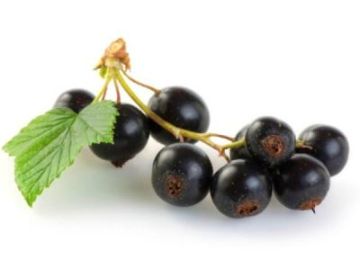 Foods for diabetics # 2: Black jamun Undoubtedly, this is one of the best fruits for diabetics ...