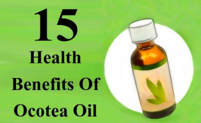 Ocatea essential oil is powerful oil that comes under the category of ...