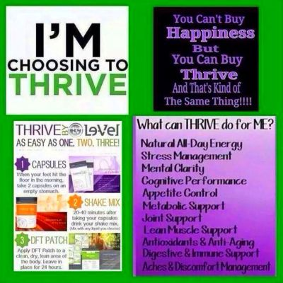 25+ best ideas about Thrive By Level on Pinterest | Level thrive, Thrive patch and Thrive experience