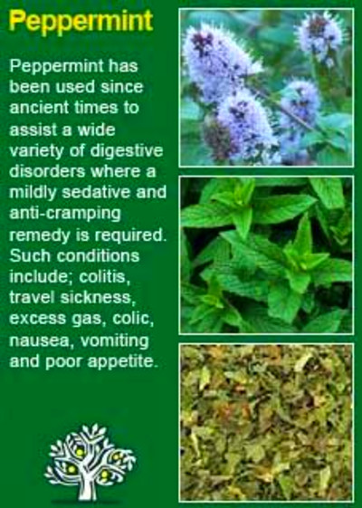 1000+ images about Home Remedies on Pinterest | Medicinal plants ...