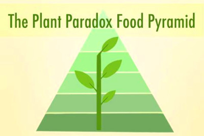 25+ best ideas about Food Pyramid on Pinterest | Healthy diet tips, Nutrition pyramid and ...