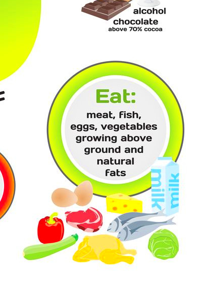 17 Best ideas about Protein Diet Plan on Pinterest | Macro ...