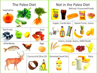 Stone Age Diet - Paleo Diet - Prevents heart disease, high ...