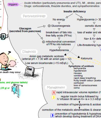 45 best images about Pathophysiology / Concept Mapping on ...