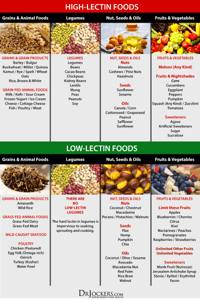 Why You Should Avoid Lectins in Your Diet! - DrJockers.com ...