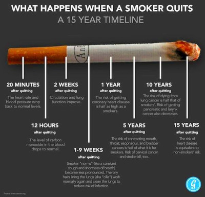 Brain Post: What Happens When a Smoker Quits? | A 15-Year Timeline - SnowBrains