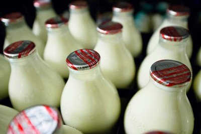 Full-fat dairy milk can reduce the risk of diabetes and help you lose weight, say experts ...