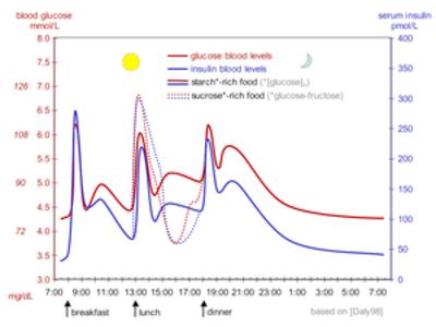 Blood sugar level - Wikipedia