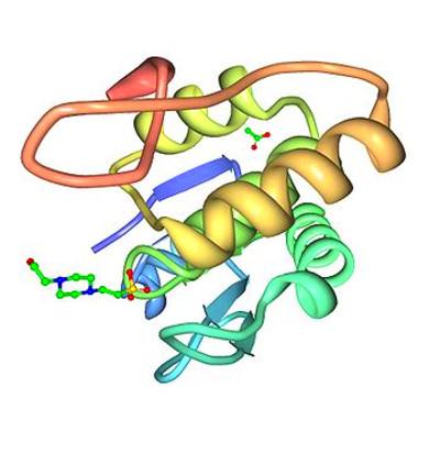 Estructura 3D de la proteína fosfatasa dual específica DUSP18 humana ...