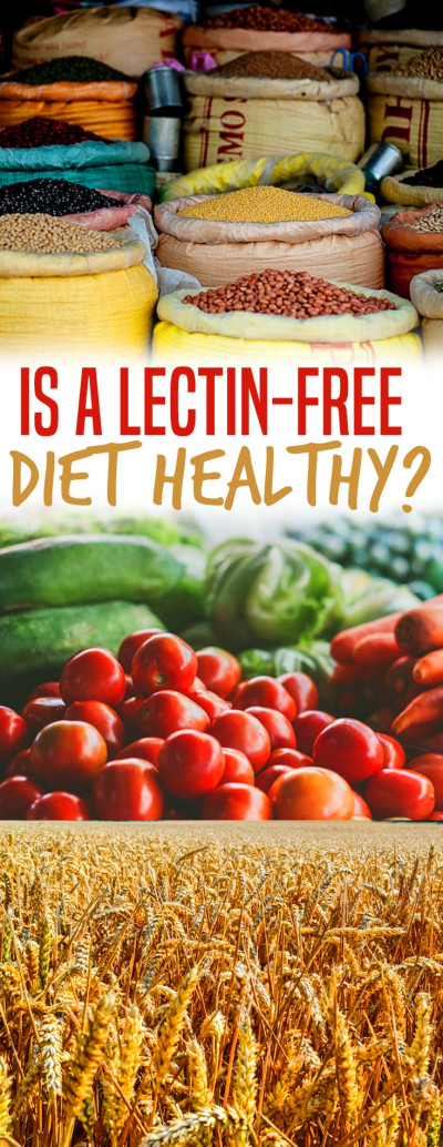 "Lectin is the ""New Gluten"" : Is a Lectin-Free Diet Healthy ..."