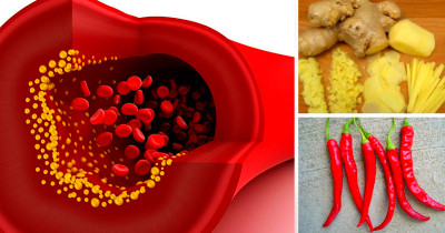 Foods That Help Blood Flow And Circulation | Food