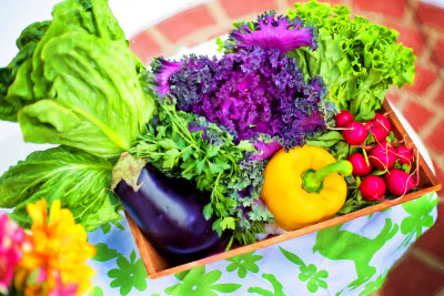 What Are Good Foods To Eat For Diabetes? - GLOBAL HEALING EXCHANGE