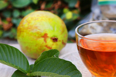 Buy Guava Tea: Benefits, Side Effects, How to Make | Herbal Teas Online