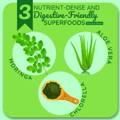 Three Nutrient Dense Superfoods That Are Easy on Your ...