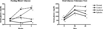 Beneficial effect of dietary Ephedra sinica on obesity and ...