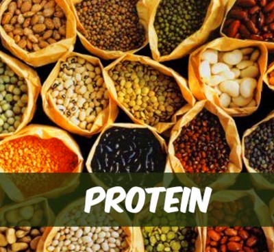 protein sources for diabetes