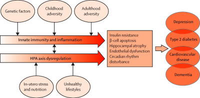 The link between depression and diabetes: the search for shared mechanisms - The Lancet Diabetes ...