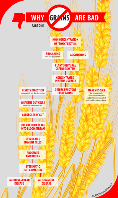 Why Grains Are Bad--Part 1, Lectins and the Gut ~ The ...