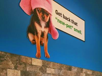 PET SUPPLIES PLUS in Hillsdale, NJ - Local Coupons June 2019