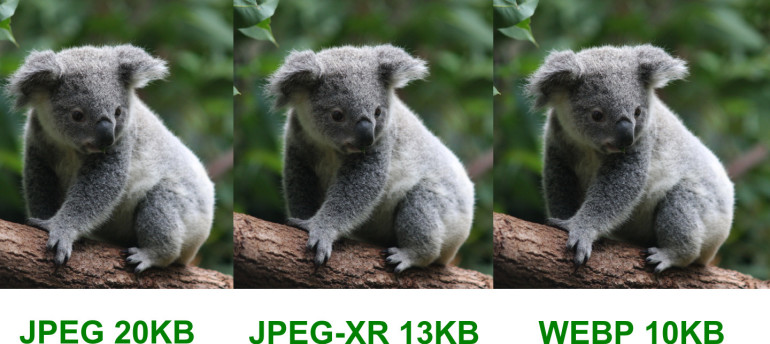 Automatically deliver the best image format to the browser
