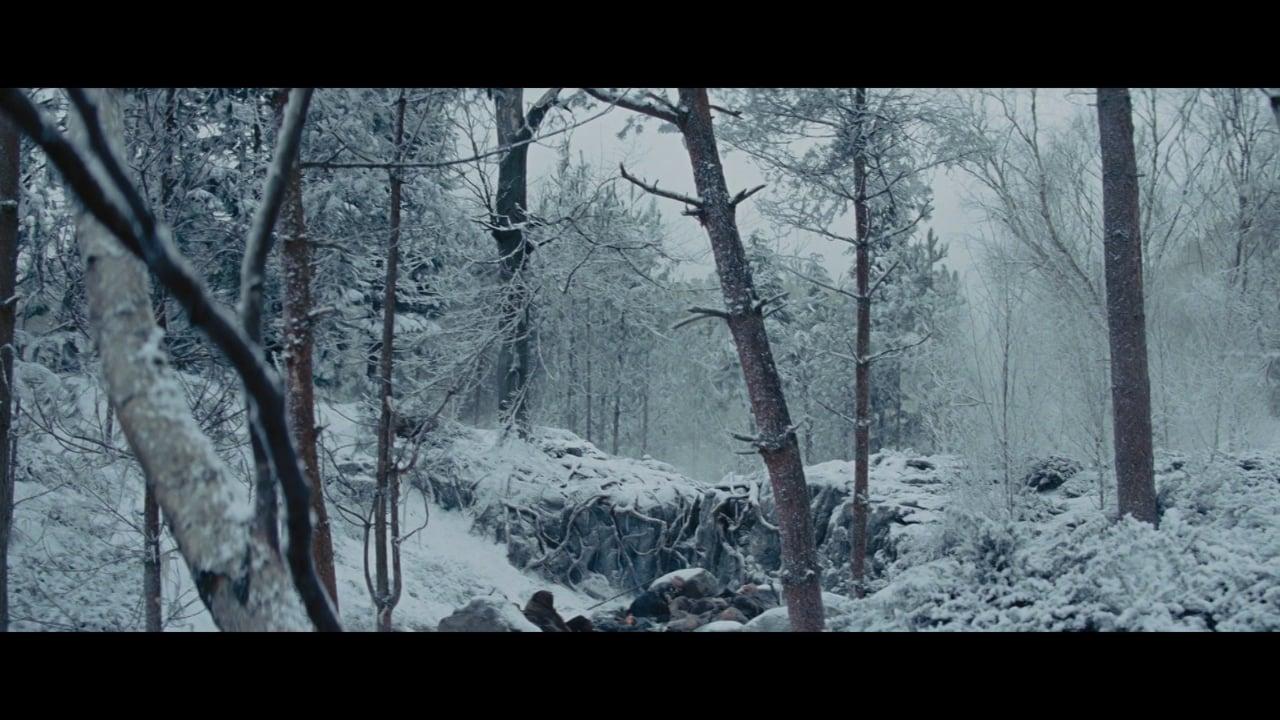 Falling Snow Light Rural