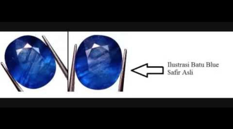 cara membedakan blue wizard asli pria lagianget live agen