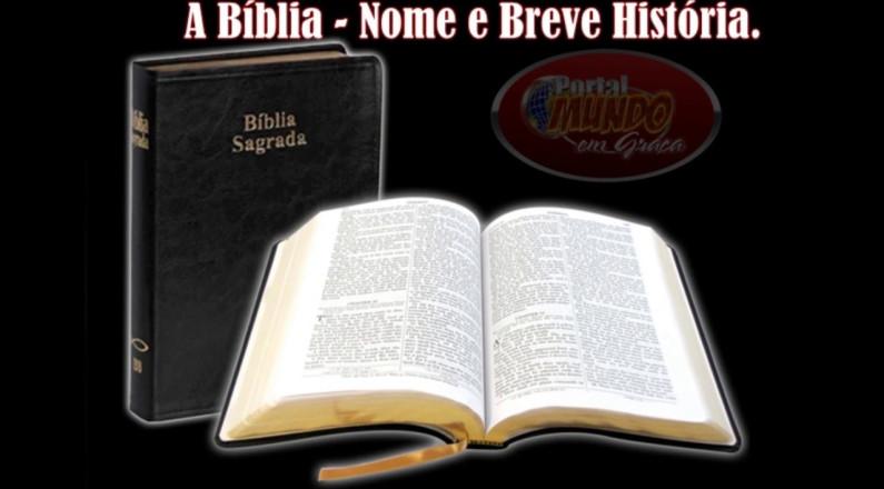 Estrutura e Livros da Bíblia - Conheça mais este Livro