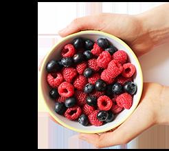 Berries p1wmlh
