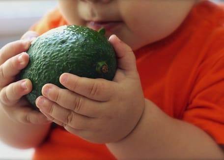 chubby baby wearing an orange shirt holding an avocado Credit: ponce_photography at Pixabay.com