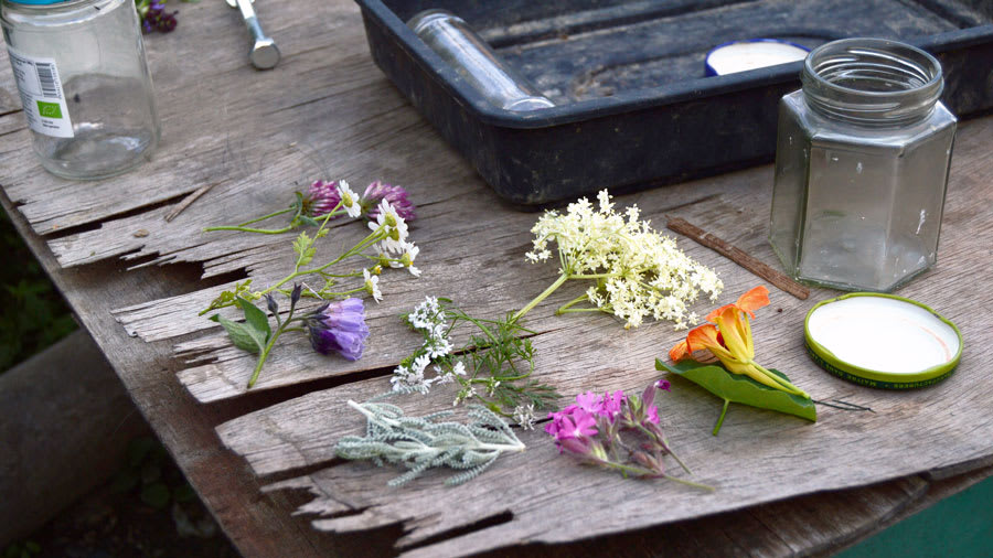herbs and flowers on wooden table
