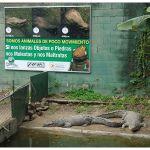 Aviso Informativo para el Zoológico Las Delicias