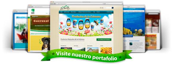 Diseño de Páginas web profesionales