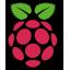 Logo de Raspberry Pi