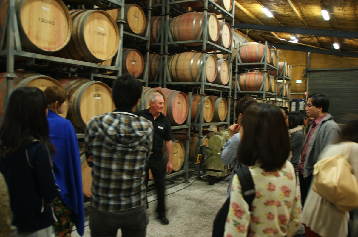 ワイン工場内を見学