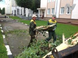 Коммунальные службы Ульяновска устраняют последствия субботнего урагана