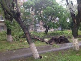 После ливня и урагана движение на ульяновских дорогах оперативно восстановлено