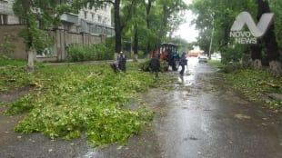 Около 700 человек занимаются обрезкой и вывозом поваленных деревьев в Ульяновске