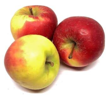 De Vitaminebron - Elstar Appels