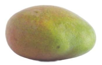 De Vitaminebron - Mango