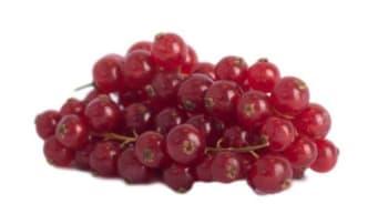 De Vitaminebron - Rode Bessen
