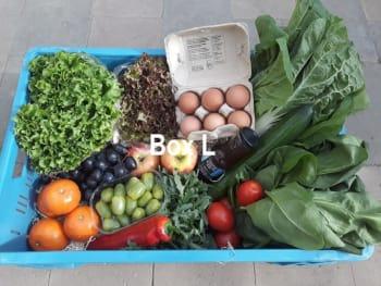 De Groene Schuur - Groente/Fruitbox groot