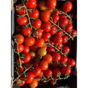 Fruitkwekerij De Stokhorst - Smaak Tomaten