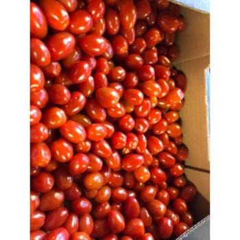 Fruitkwekerij De Stokhorst - Snack Tomaatjes