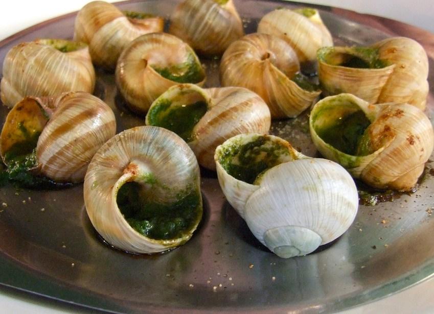 Garlic snails french