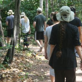 Outside kinhin - Walking meditation