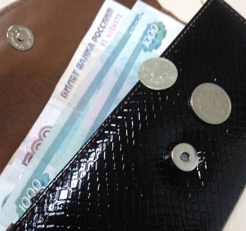 Ежемесячные выплаты на первенцев и субсидии на оплату ЖКУ вновь произведут автоматически