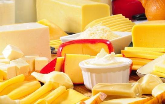 Производство сыра домашний бизнес
